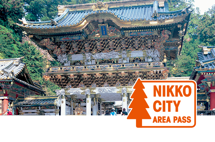 NIKKO CITY AREA PASS