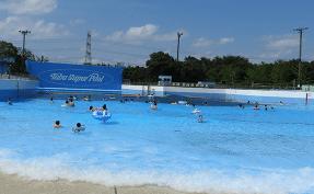 東武 動物 公園 プール 2020
